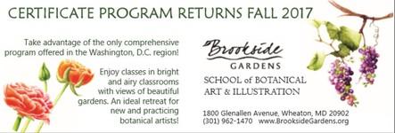 Other Art Instruction nbspBrooksidersquos School of Botanical Arts amp Illustration