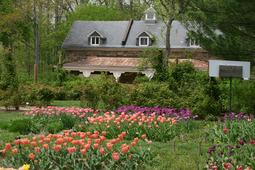 Spring 2011